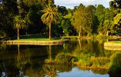 Royal Botanic Gardens of Melbourne